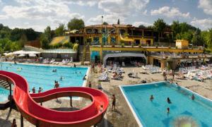 Hotel norcenni girasole club a figline valdarno provincia di firenze - Piscina figline valdarno ...